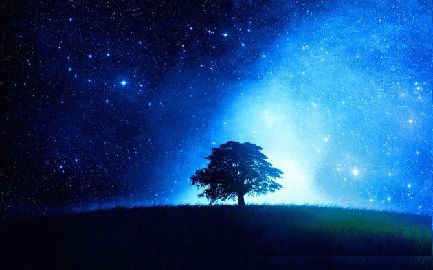 albero-solitario-siluetta-dalbero-cielo-stellato-bagliore-209630